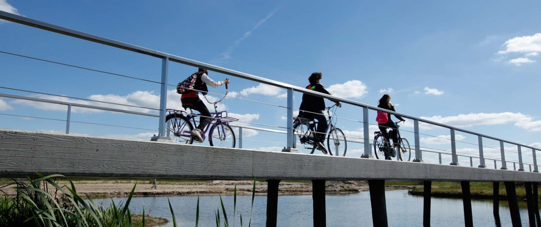 Werkdonken cycle bridge Breda, low view from rvs and conrete slender bridge
