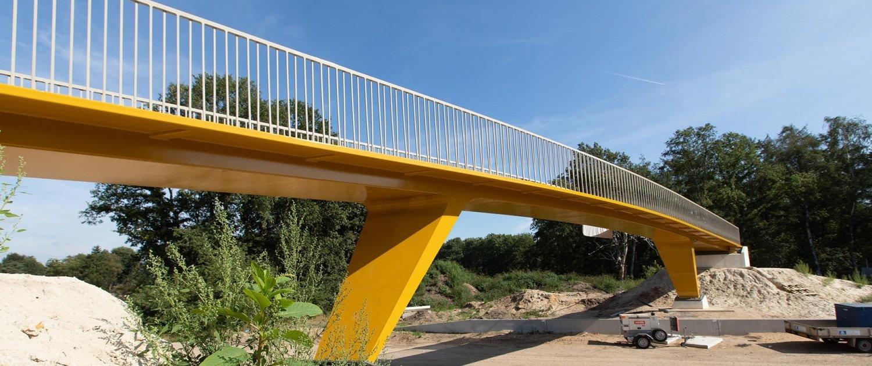 BAR.03_066_Schaapsdrif-pedestrian-bridge-N303-ipvDelft